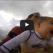 """BEBA SURFER: Ima samo 9 mjeseci, a već """"jaše"""" talase sa tatom! (VIDEO)"""