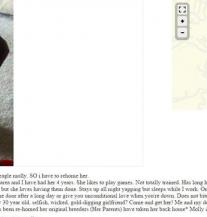 Urnebesan oglas: Tražila da bira između nje i psa, ovom se nije nadala (FOTO)