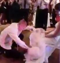 Nije najbolje krenulo: Pijani mladoženja ponizio dragu usred vjenčanja (VIDEO)